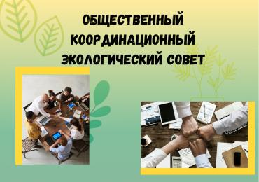 Общественный координационный экологический совет